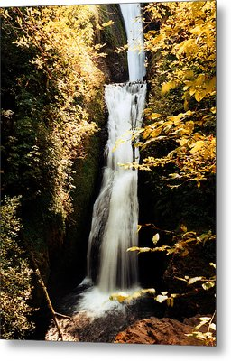 Metal Print featuring the photograph Oregon Waterfall Yellows by Maureen E Ritter