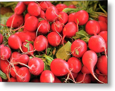 Organic Radishes Metal Print by Wendy Connett