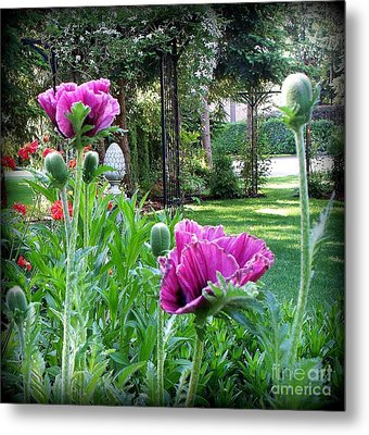 Metal Print featuring the photograph Oriental Poppies by Tanya  Searcy