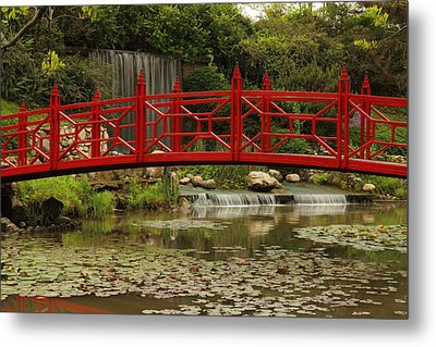 Metal Print featuring the photograph Ornamental Garden by Coby Cooper