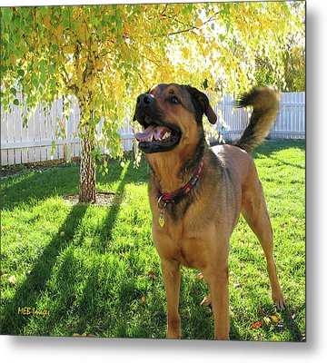 Our Friend Milton Metal Print by Margaret Buchanan