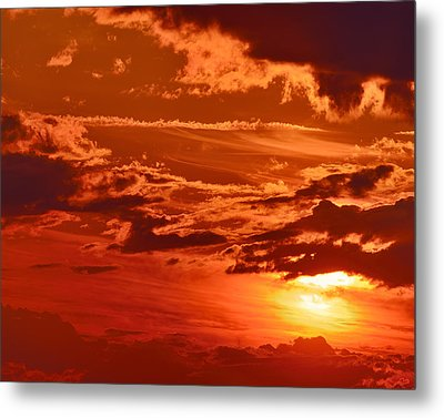 Out My Door Metal Print by Tony Beck