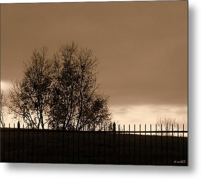Out Of Reach Metal Print by Ed Smith