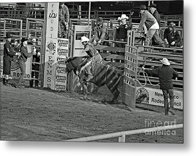 Out Of The Chute Metal Print by Shawn Naranjo