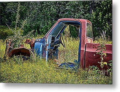 Out To Pasture Metal Print by Ken Williams