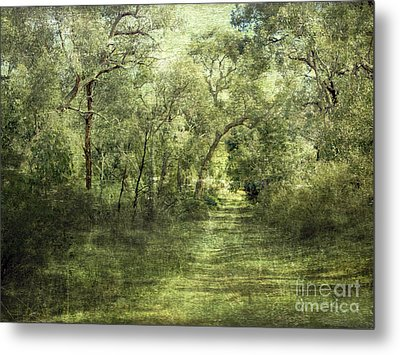 Outback Bush Metal Print by Linde Townsend