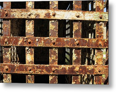Metal Print featuring the photograph Outside Looking In by Fran Riley