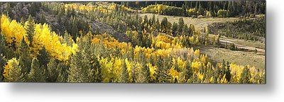 Outside Nederland Co Metal Print by Larry Darnell