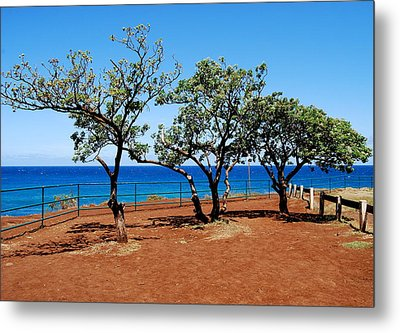 Metal Print featuring the photograph Overlook In Maui by Caroline Stella