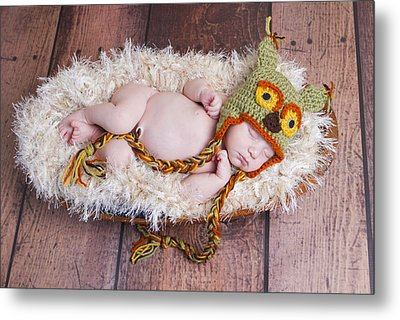 Owl Be Sleeping Metal Print by Cindy Lindow
