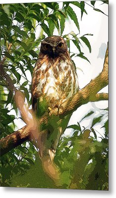 Metal Print featuring the digital art Owl In Contemplation by Pravine Chester