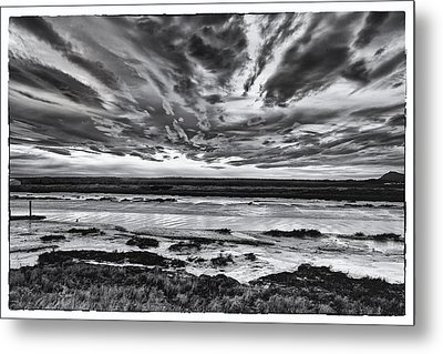 Padilla Bay Metal Print by Tony Locke