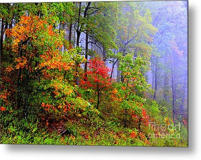 Painted Autumn Metal Print by Carolyn Wright