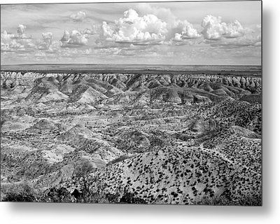 Painted Desert In B And W Metal Print by Melany Sarafis