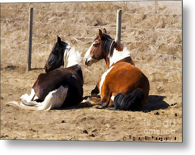 Painted Horses I Metal Print