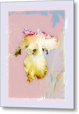 Metal Print featuring the photograph Painted Iris by Karen Lynch