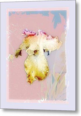 Painted Iris Metal Print by Karen Lynch