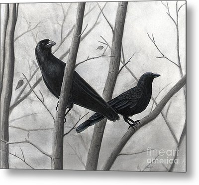 Pair Of Crows Metal Print by Christian Conner