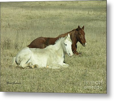Metal Print featuring the photograph Pair Of Horses by Yumi Johnson