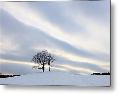 Pair Of Trees On Hill At Sunset Metal Print