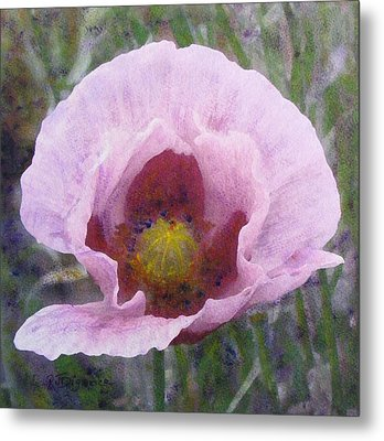 Metal Print featuring the painting Pale Pink  Poppy by Richard James Digance