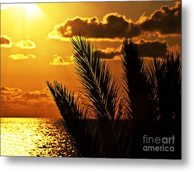 Palm Tree Silhouette At Sunset On The Beach Metal Print by Anna Om