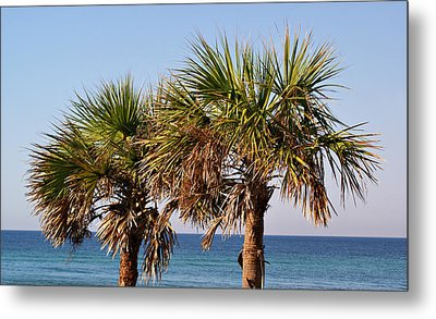 Palm Trees Metal Print by Sandy Keeton