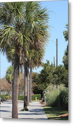 Palm Way Metal Print