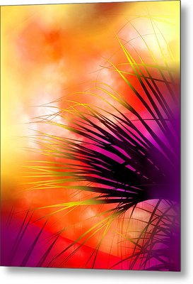 Metal Print featuring the photograph Palmetto by Judi Bagwell