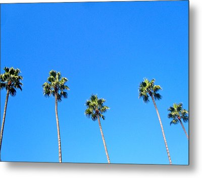 Palms Metal Print by JBDSGND OsoPorto