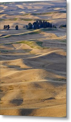 Palouse Harvest Metal Print