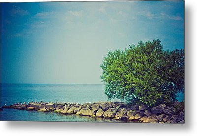 Metal Print featuring the photograph Paradise Cove by Sara Frank