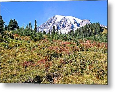 Paradise In Fall On Mt. Rainier 2 Metal Print