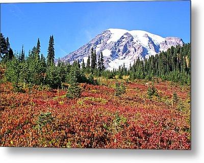 Paradise In Fall On Mt. Rainier  Metal Print