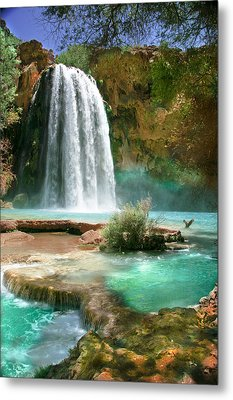 Paradise Metal Print by PMG Images