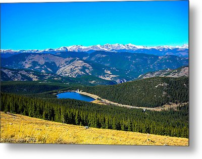 Metal Print featuring the photograph Paradise by Shannon Harrington