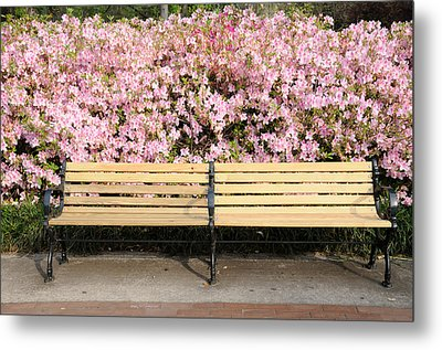 Metal Print featuring the photograph Park Bench And Azaleas by Bradford Martin
