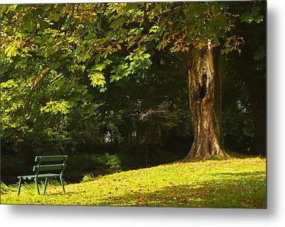 Park Bench Beside The Owenriff River In Metal Print by Trish Punch
