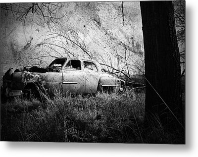 Park In The Trees  Metal Print by Empty Wall