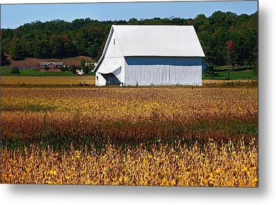 Parke County Countryside Metal Print