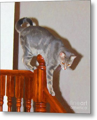 Parkour Cat Metal Print by Donna Munro
