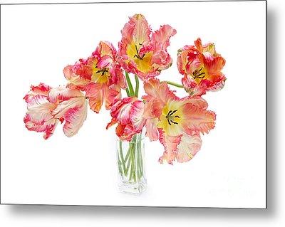 Parrot Tulips In A Glass Vase Metal Print by Ann Garrett