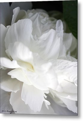Metal Print featuring the photograph Passionate About Peonies by Penny Hunt