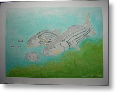 Pastel Fish Metal Print by Maya M