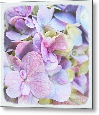 Metal Print featuring the photograph Pastel Hydrangeas - Square by Kerri Ligatich