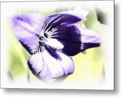Pastel Iris Metal Print by Susan Leggett