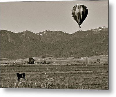 Metal Print featuring the photograph Pastoral Surprise by Eric Tressler