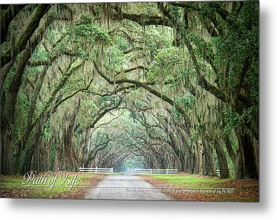 Path Of Life 1 Metal Print by Mary Hershberger