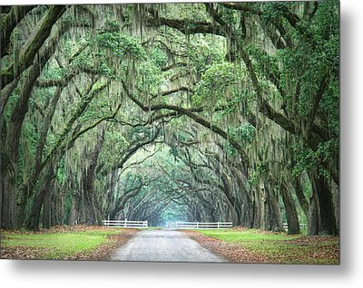 Metal Print featuring the photograph Path Of Life 4 by Mary Hershberger
