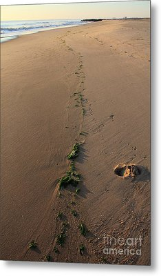 Path To Eden Metal Print